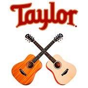Новое поступление: Гитары TAYLOR (США)!