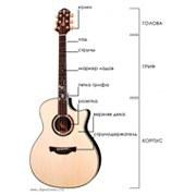 Конструкции и виды акустических гитар