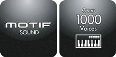 Motif Sound