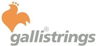 GALLI logo