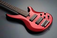 Бас-гитара YAMAHA TRBX505 TBR