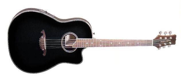 Акустическая гитара Parksons EA205 BKS