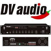 Новое поступление: DV audio!