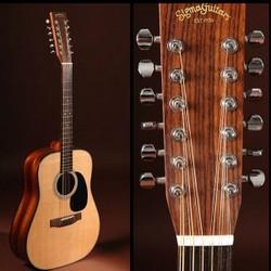Преимущества и особенности двенадцатиструнной гитары