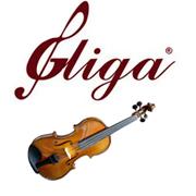 Новая поставка: смычковые инструменты Gliga!