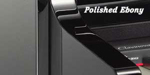 Polished Ebony