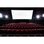 Изготовление экранов для кинотеатров