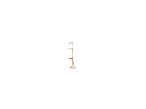Горн MAXTONE TBC28LB (TSC33) - 43219 за 2419 грн.